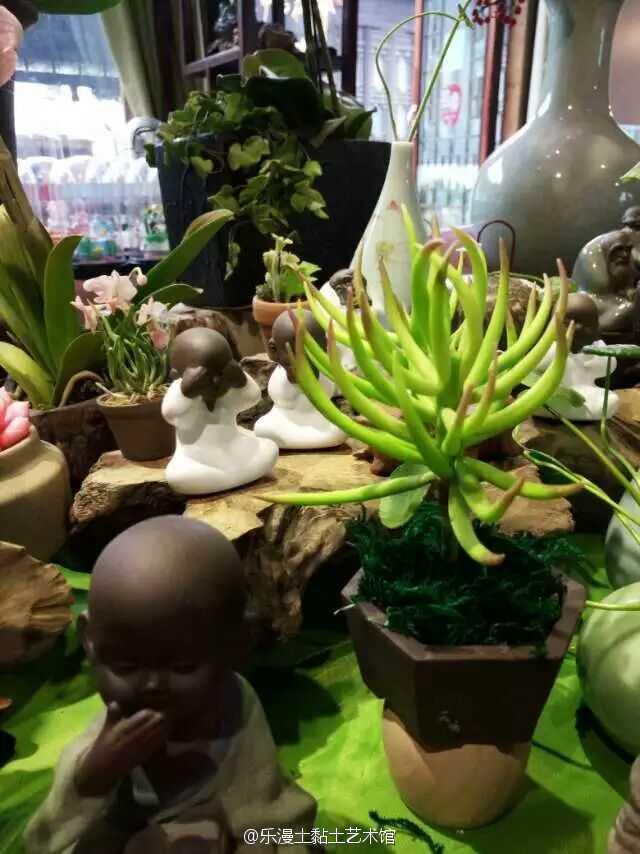 粘土作品教程图解植物大