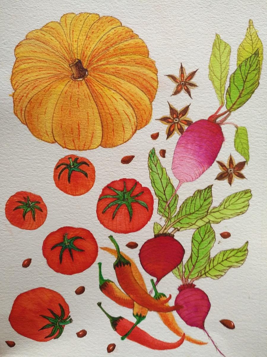 原创作品:手绘食物插画
