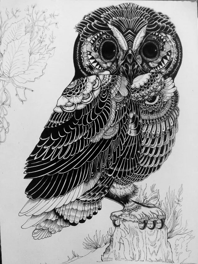 针管笔 黑白 手绘动物 第二弹