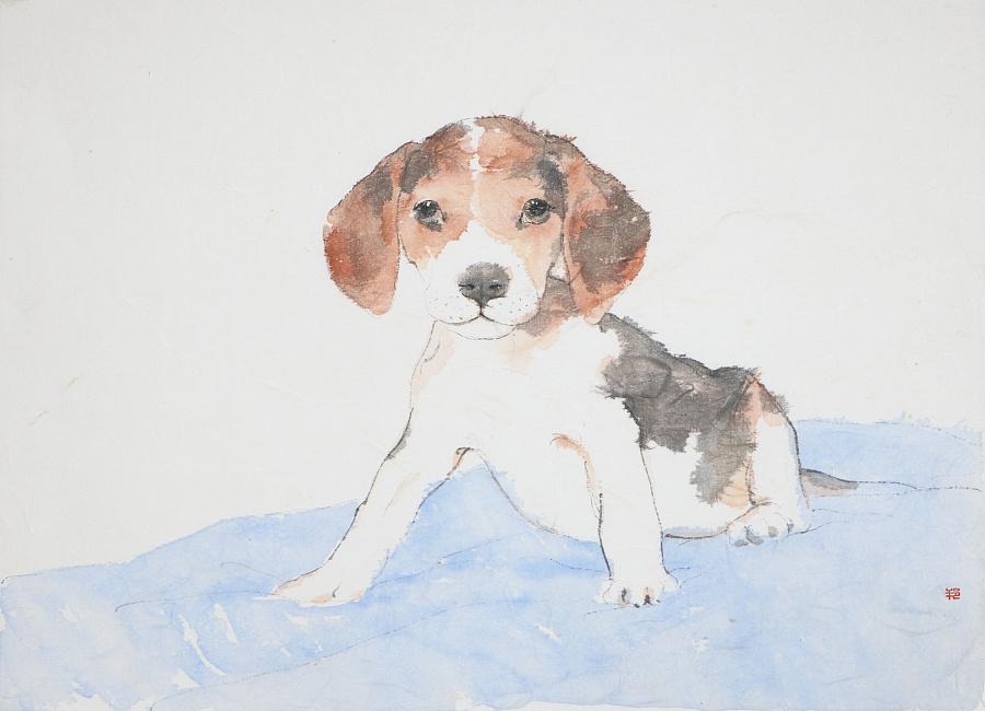 查看《狗狗系列作品》原图,原图尺寸:4120x2974