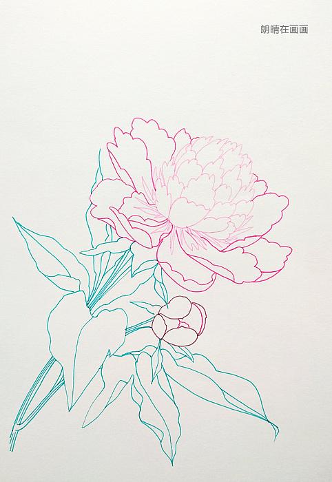 简笔画 手绘 线稿 482_700 竖版 竖屏