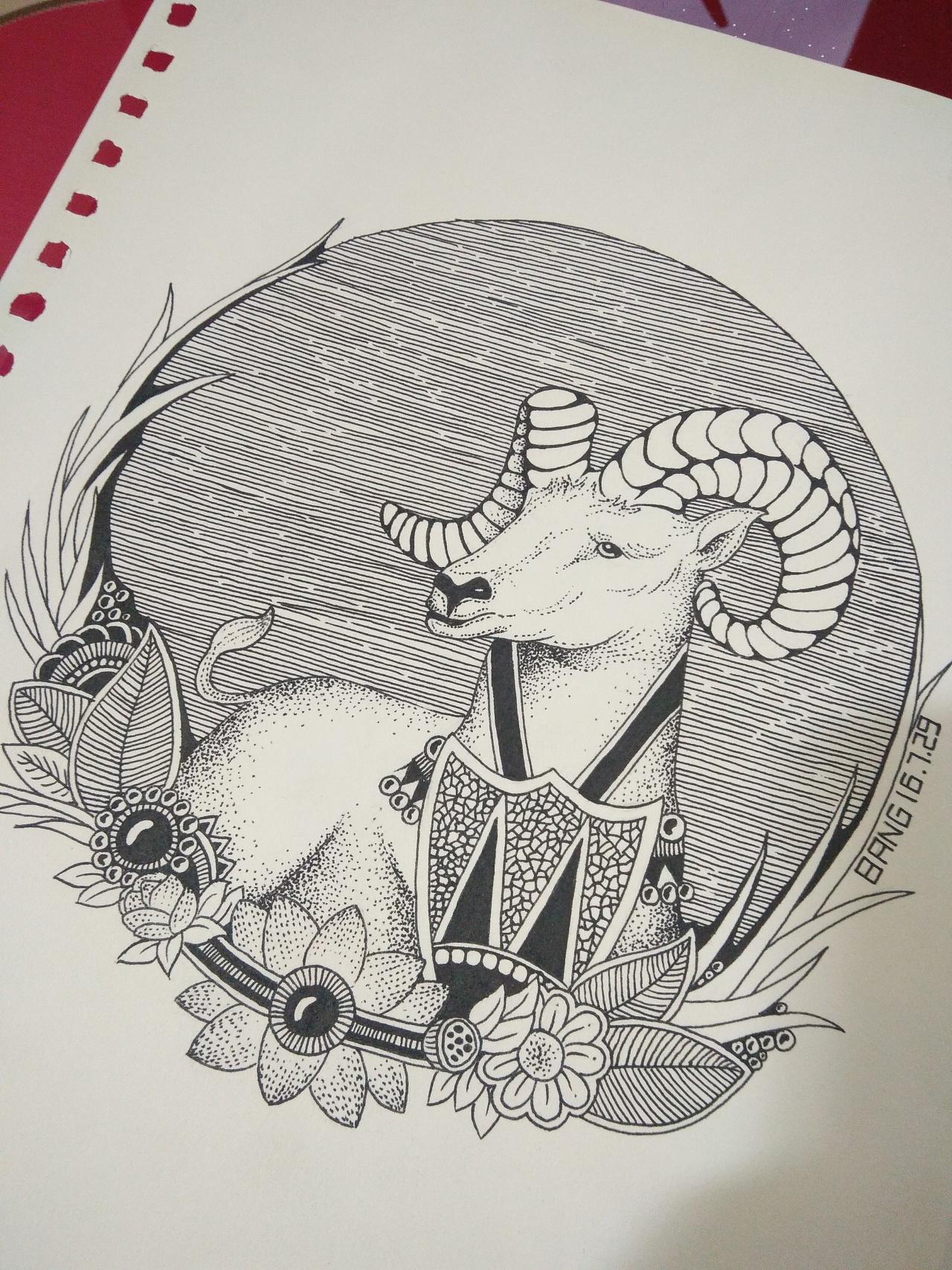 黑白插画——十二生肖