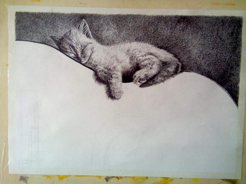 《熟睡的喵星人》黑色中性笔画图片