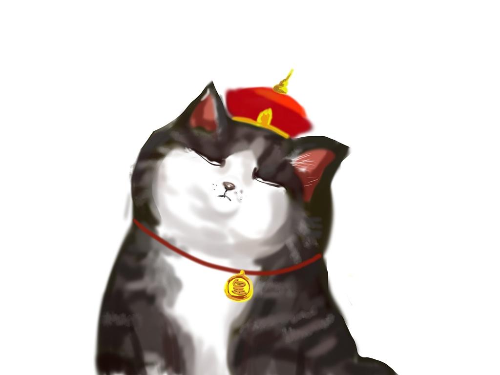 吾皇猫为何不跪图片