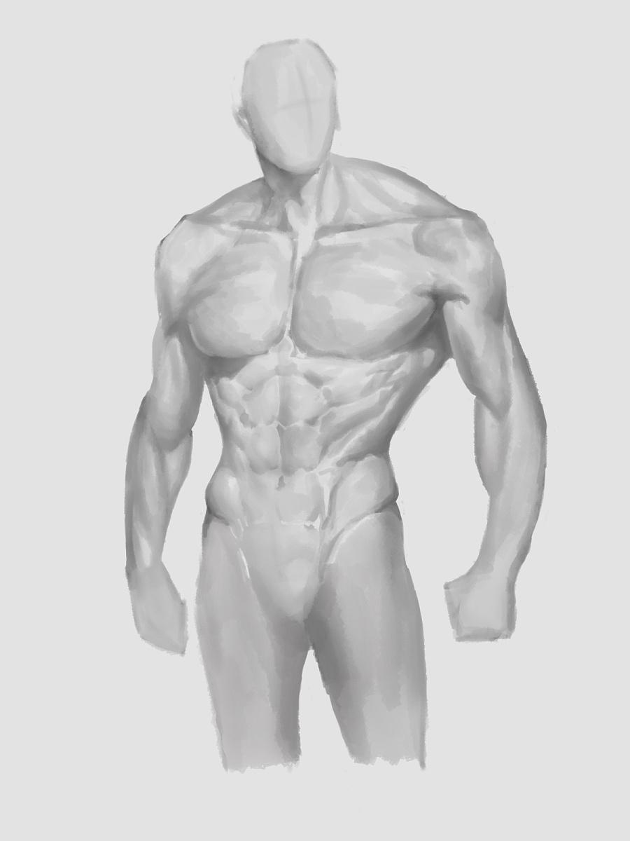 身体结构|游戏原画|插画|iris天晴