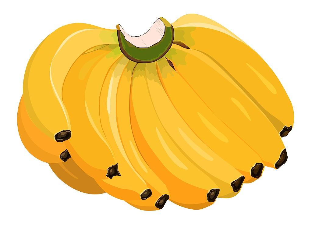 ps鼠绘矢量香蕉