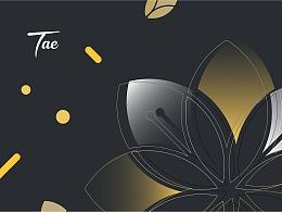 TAE|品牌设计