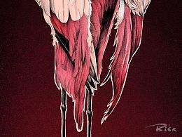画只《火烈鸟》