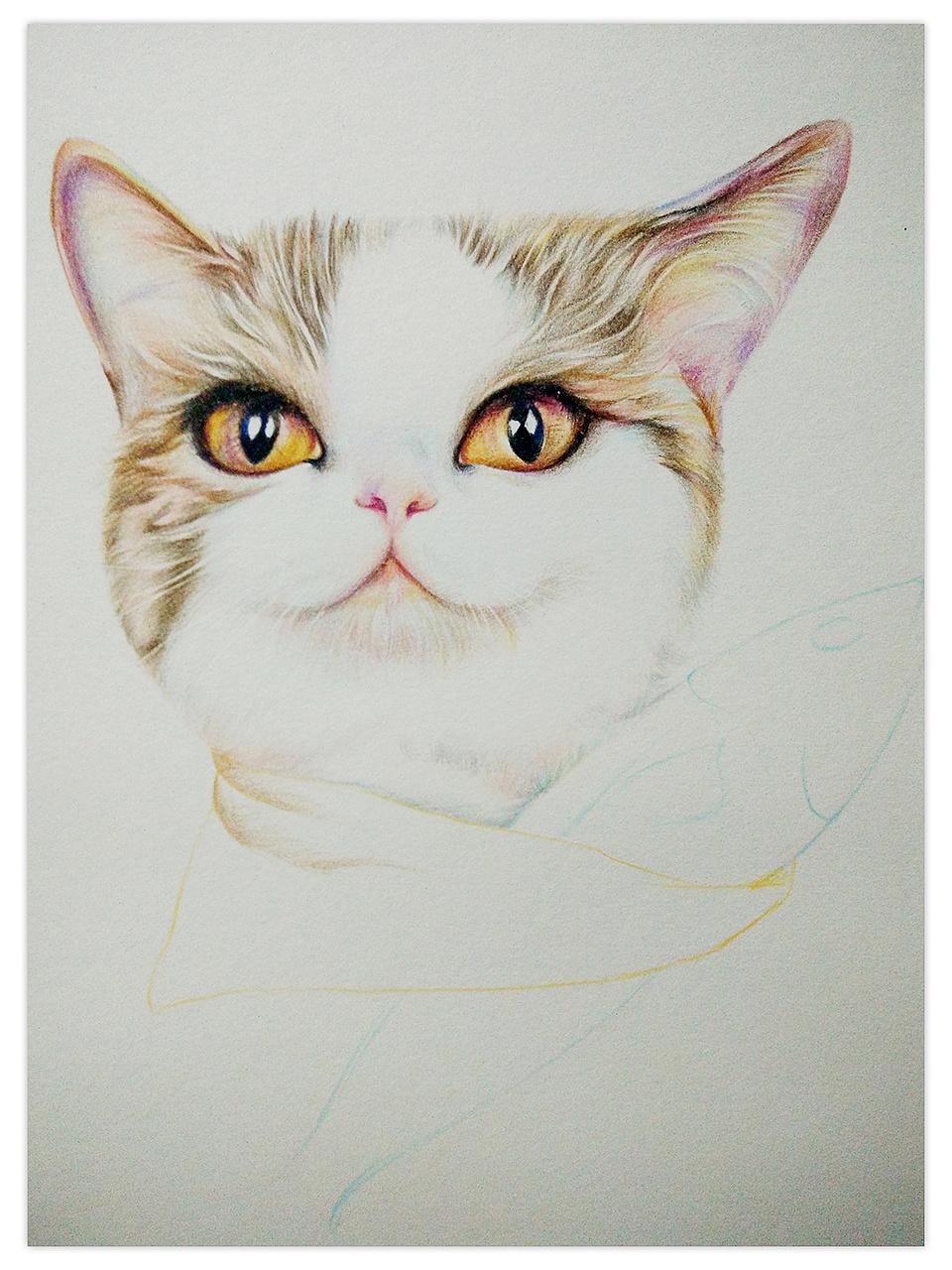 彩铅手绘手机壁纸
