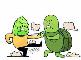 小苦瓜和小乌龟打架,打的太激烈了…… 