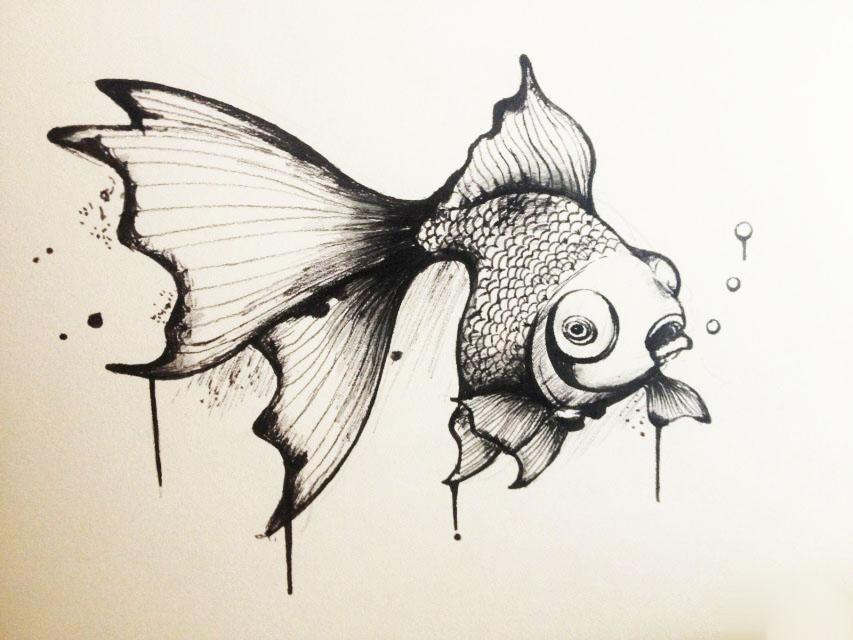 黑白手绘金鱼|纯艺术|钢笔画|云游品牌设计 - 原创