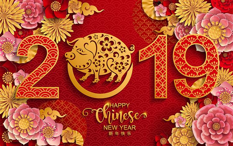 2019猪年新年元素己亥年喜庆元素剪纸元素 新年背景