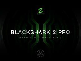 黑鲨游戏手机2Pro壁纸