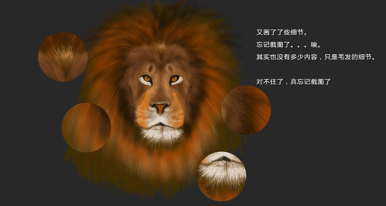 手绘狮子一头,狮子头