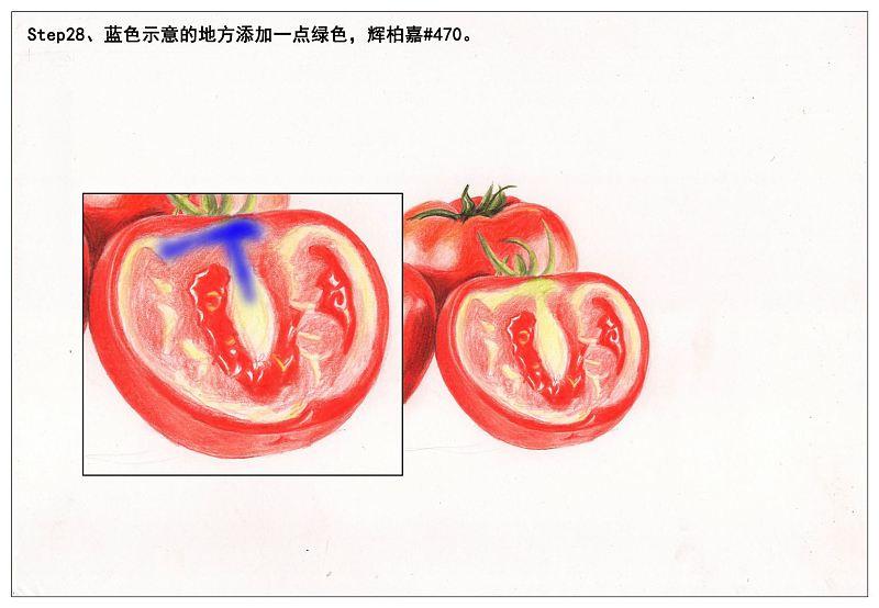 教程:【驴大萌彩铅教程161】手绘水果蔬菜——西红柿(原创文章)