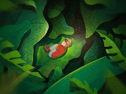 森林里的小精灵