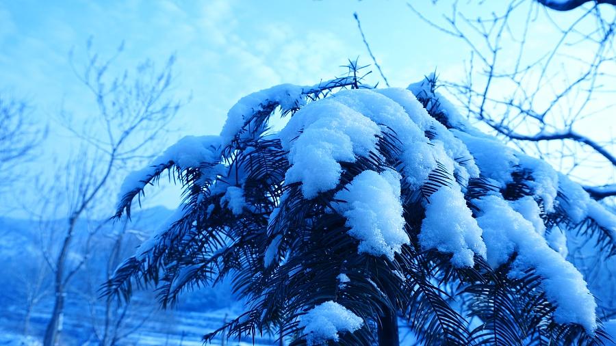 愿你三冬暖愿你春不寒|风光|摄影|晚晴的天空有