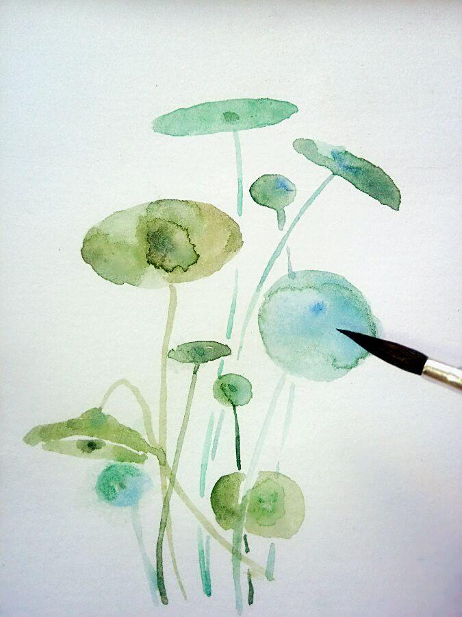 植物水彩手绘