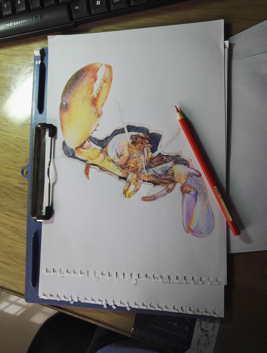3d彩铅画手绘图片