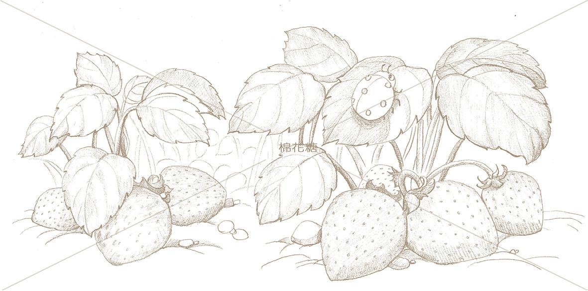 吃草莓吧|插画|儿童插画|画画的棉花糖 - 原创作品图片