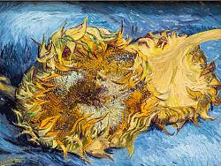 -Van Gogh- [美术馆]