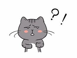 这只猫是中央戏精学院毕业的吧?