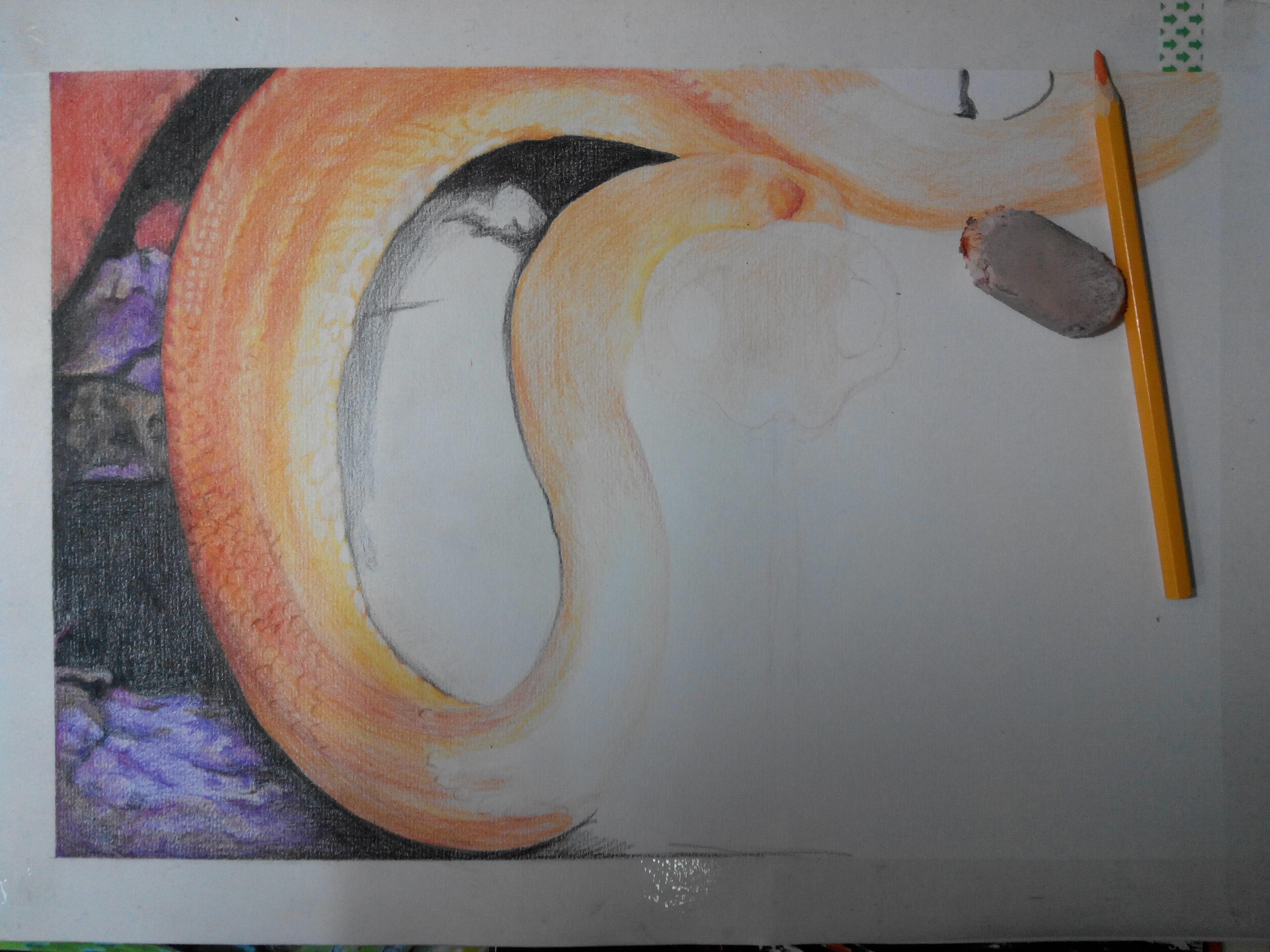 手绘彩铅4