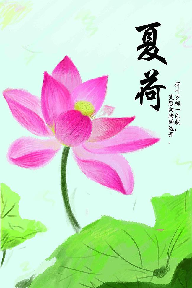 小练习:手绘夏日荷花