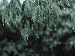 雨天小时光2