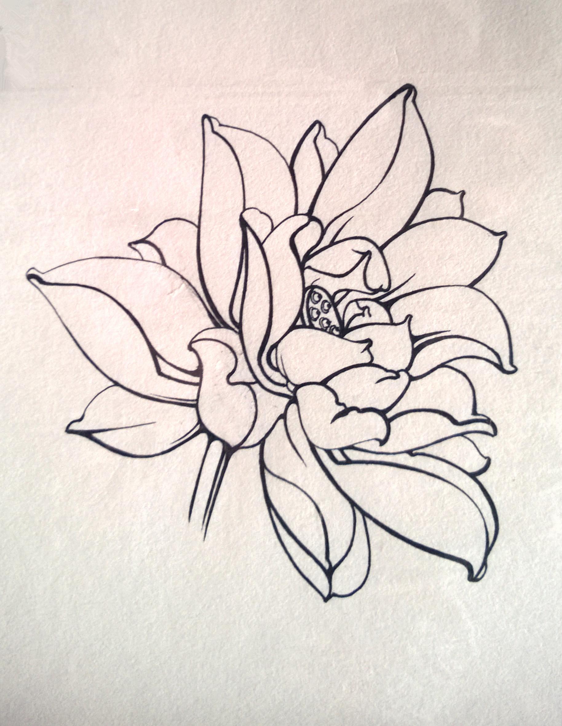 针管笔手绘小练笔