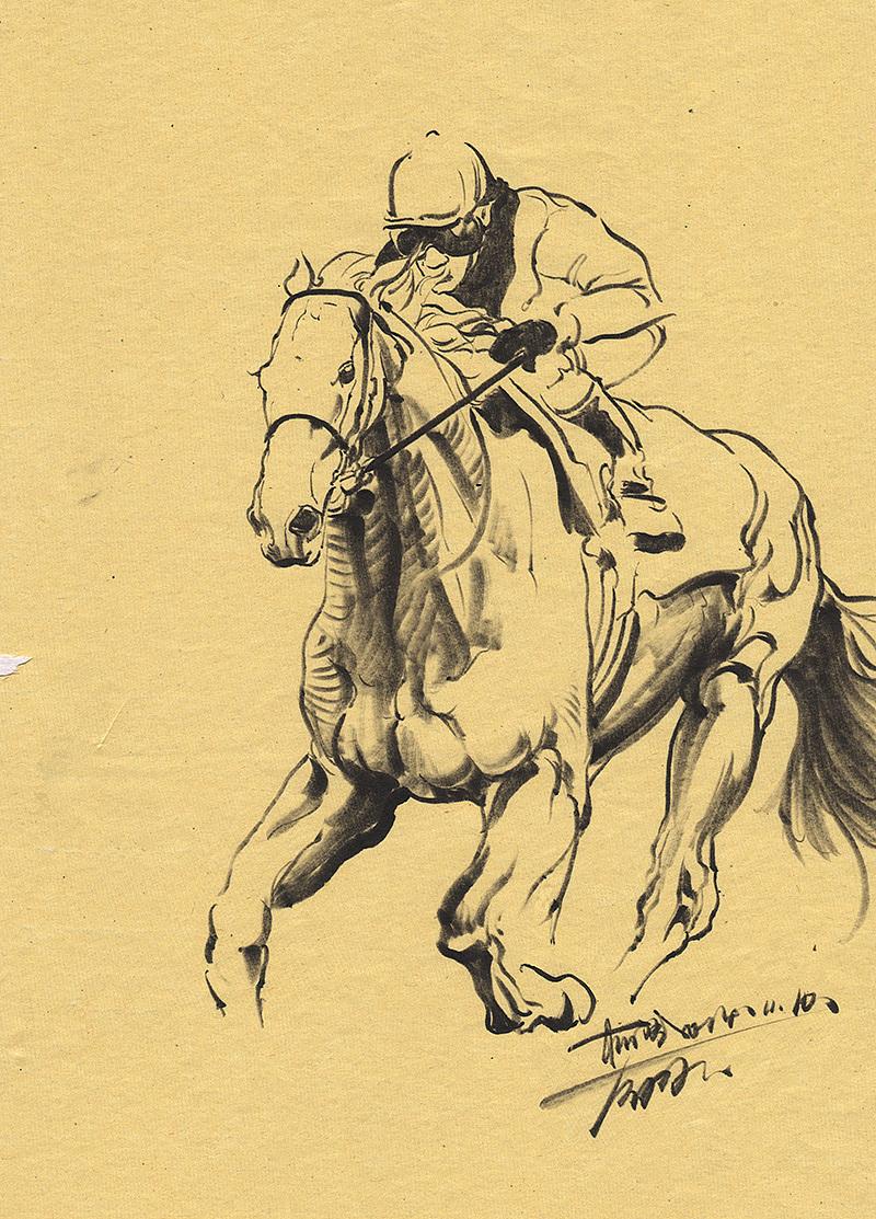 肌肉_此幅同上,注重了解马的肌肉结构.