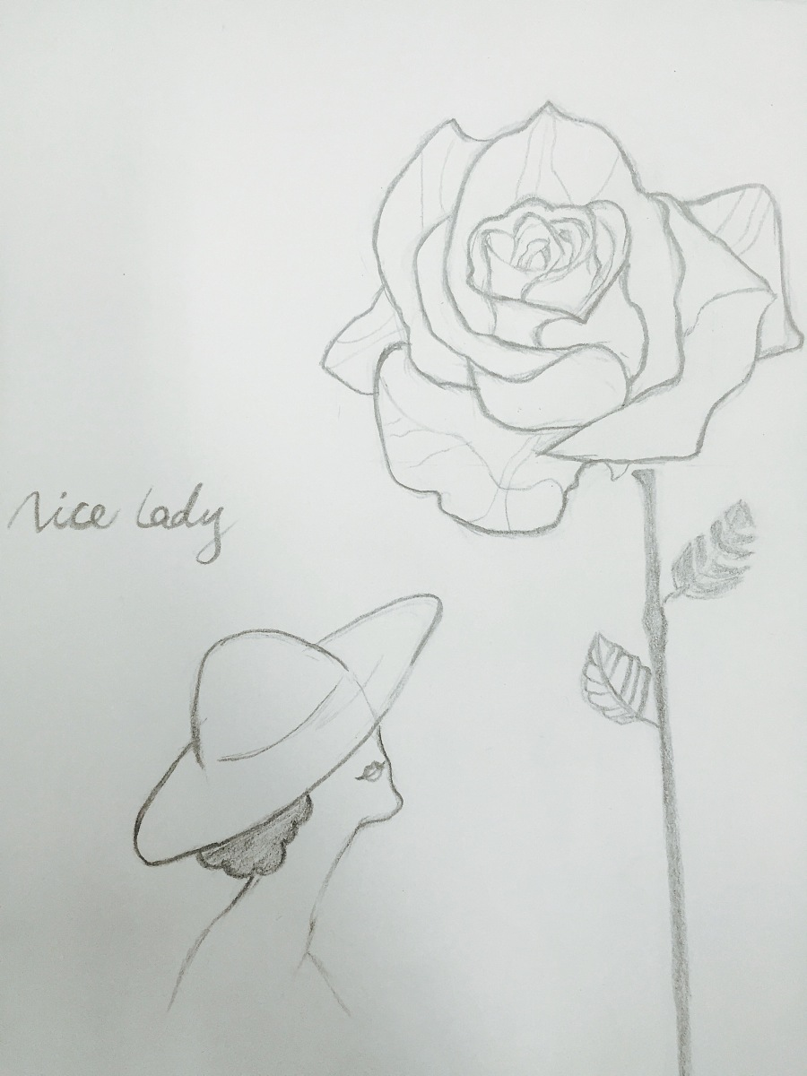 学生 1年前发布       用铅笔手绘的表达法国浪漫气息的淑女和鲜花.
