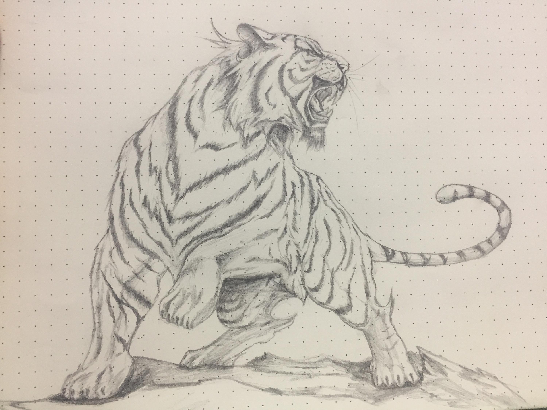 老虎怎么画铅笔画