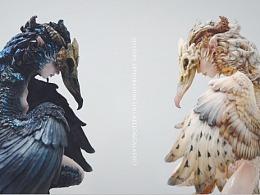 藏密探物-美人鸟