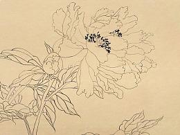 鲍彦冰国画线描牡丹作品