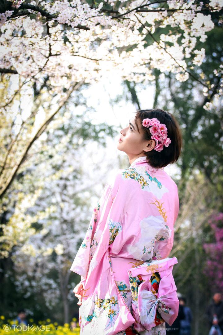 樱花树下|人像|摄影|pofire