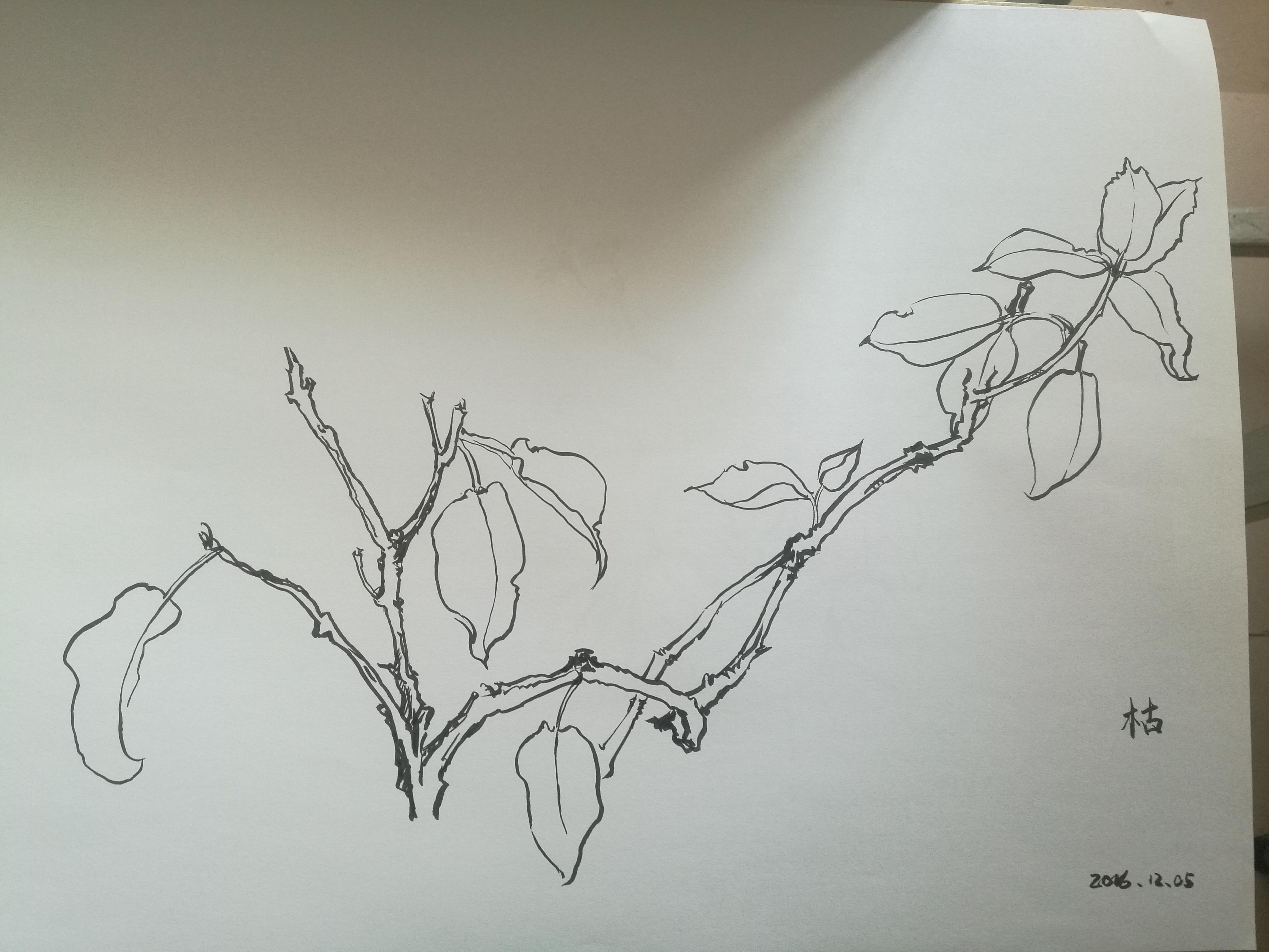 部分考研手绘作品61视觉传达专业|纯艺术|其他艺创