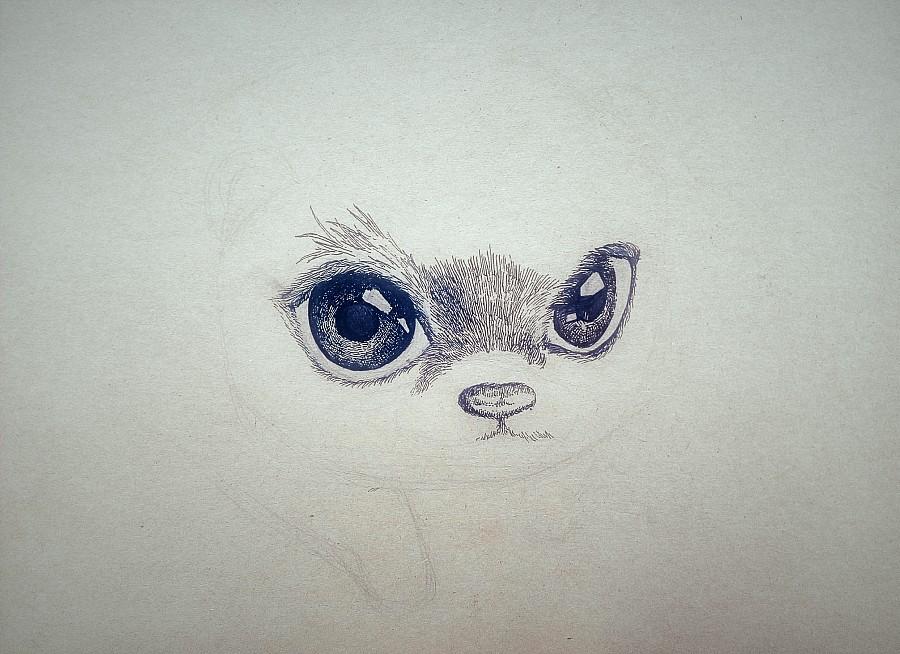 李万海手绘动物——可爱浣熊|钢笔画|纯艺术|李万海w