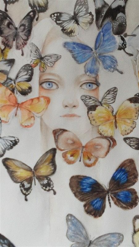 我的蝴蝶公主
