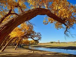 西安最美秋季摄影打卡地