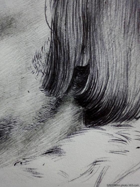 每日一画(5)——临摹作品——不一样的尝试(步骤)图片