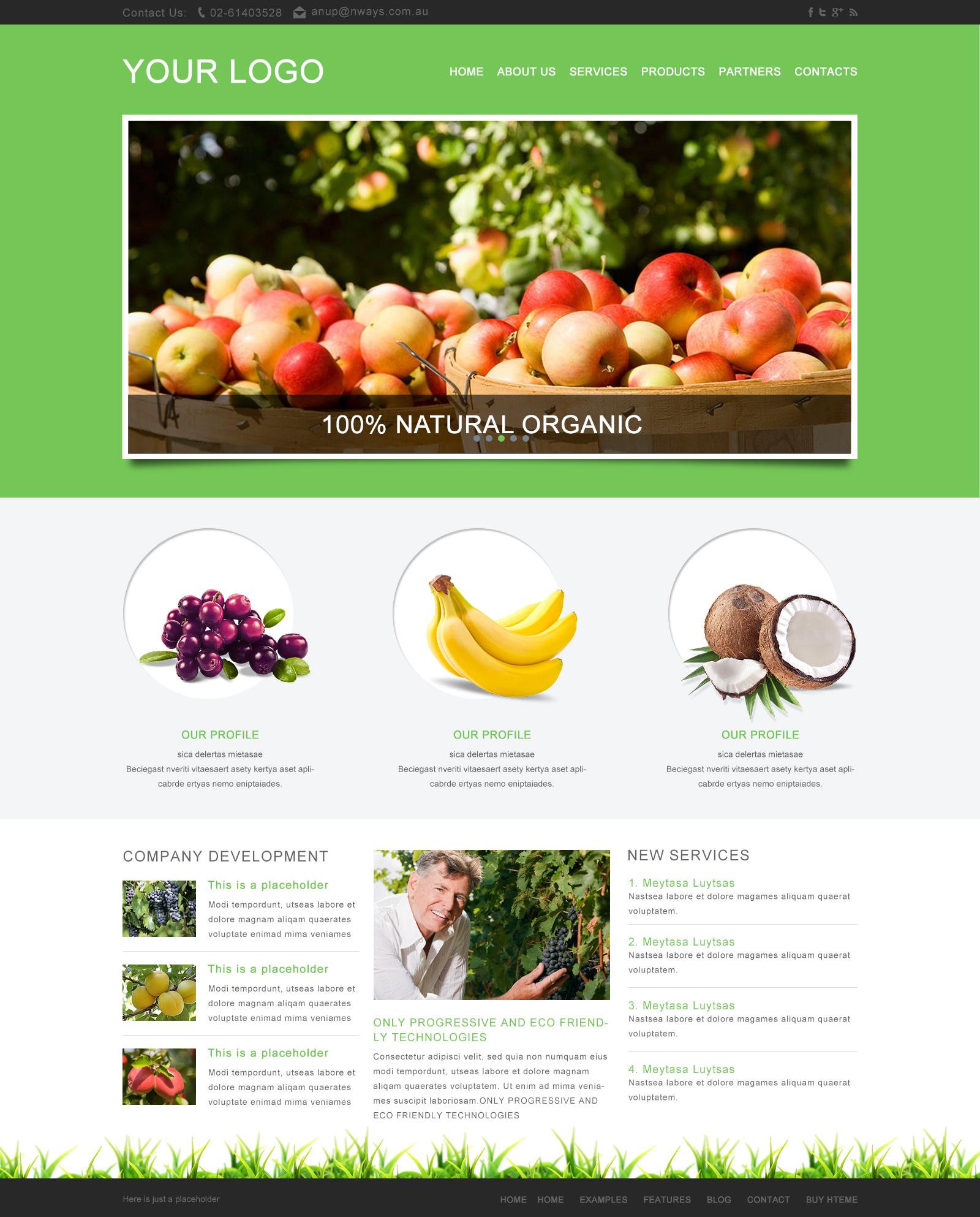 一个水果类网站模板