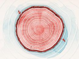 听华为解释,一棵树是如何改变我们的生活的