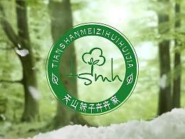 赤鸟文化/卉卉家宣传片