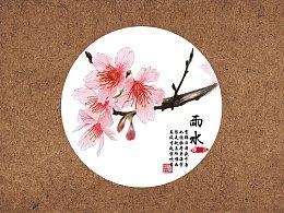 【24节气手绘花卉图鉴】雨水樱花