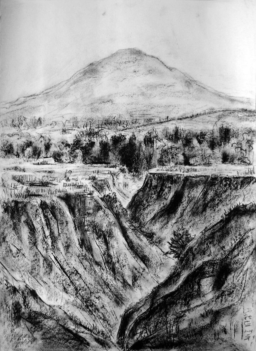 查看《09年《北方·青鸟集》作品选——零九年黑色的夏天》原图,原图尺寸:1452x1987