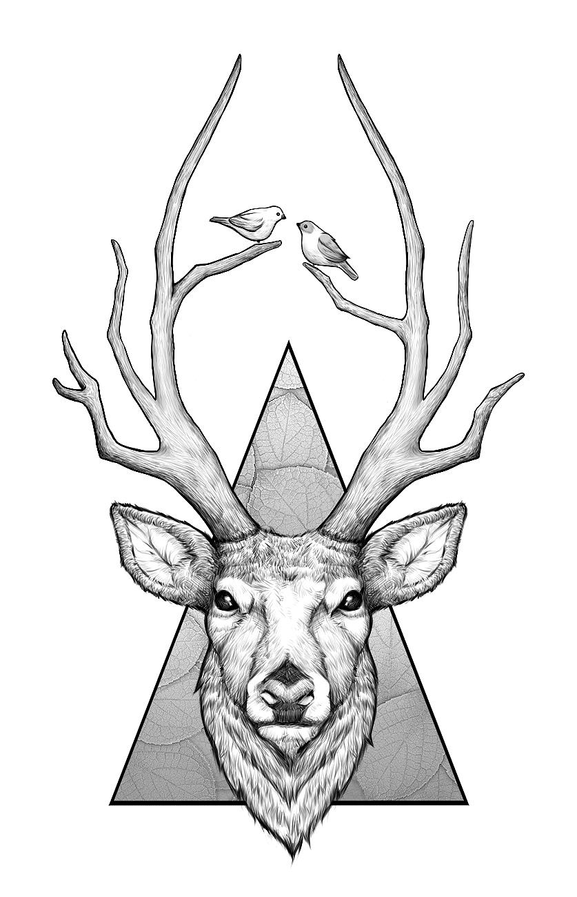 手绘正面麋鹿头彩色