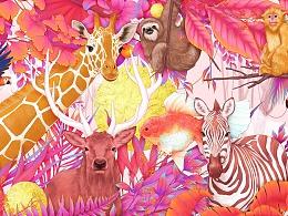《粉色森林》