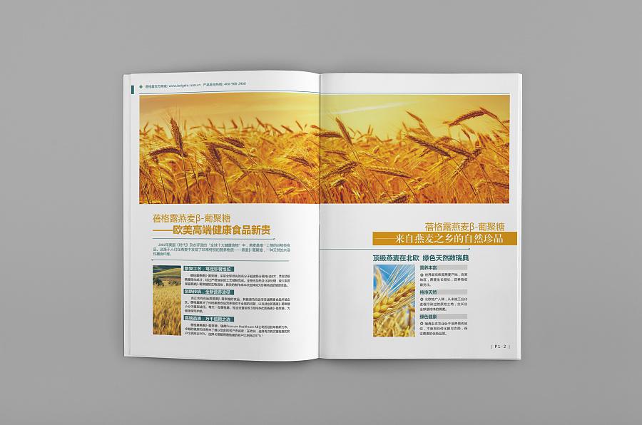 【壹思】保健品 健康食品的画册设计 宣传册设计 进口图片