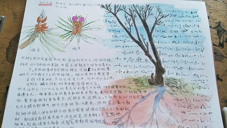 【自然笔记】